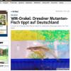 Max Planck Institut Dresden