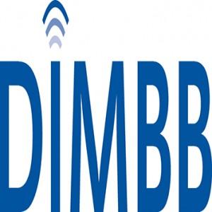 DIMBB-Logo_Pantone_286c_2