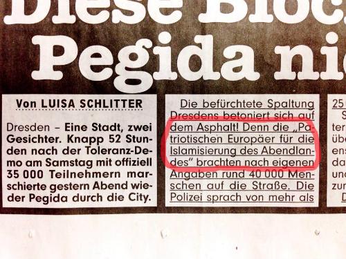 """Aussriss aus """"BILD Dresden"""" vom 13.1.2015"""